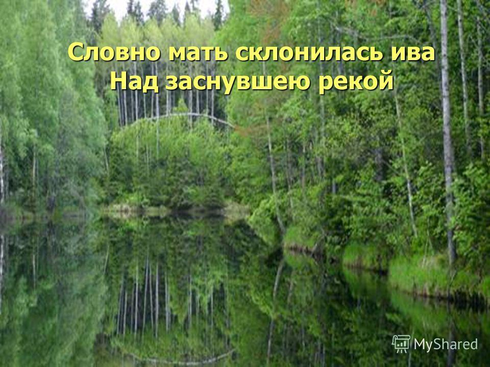 Словно мать склонилась ива Над заснувшею рекой