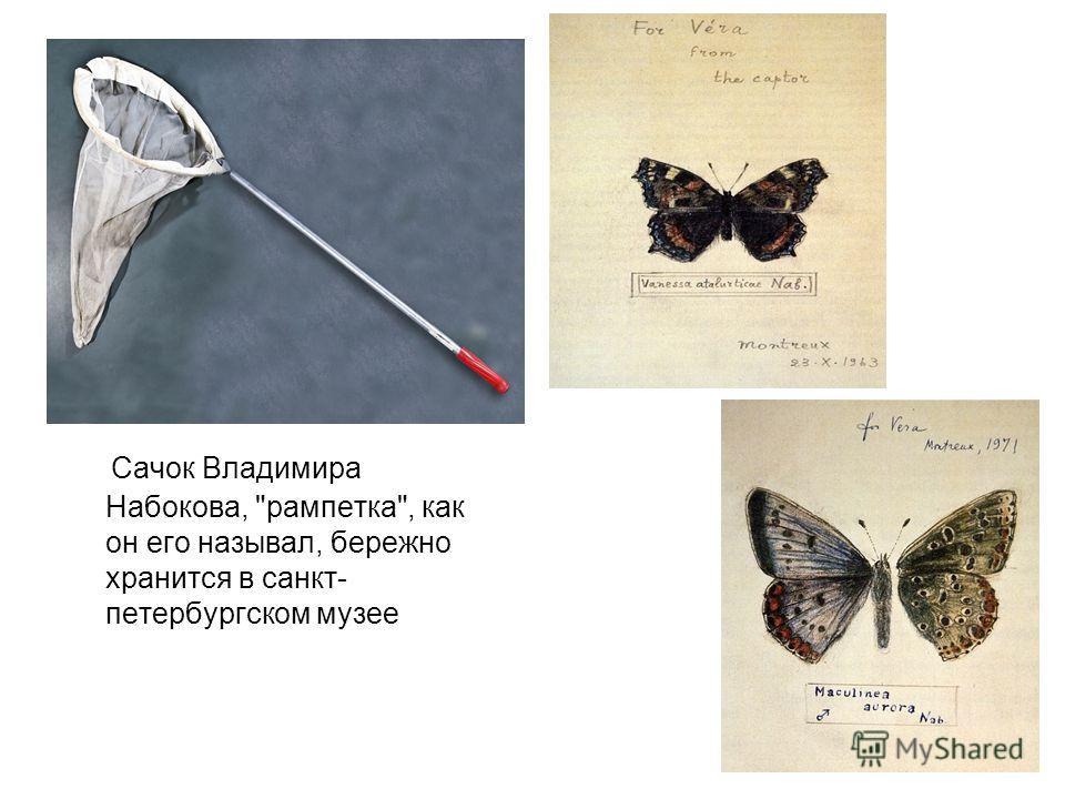 Сачок Владимира Набокова, рампетка, как он его называл, бережно хранится в санкт- петербургском музее