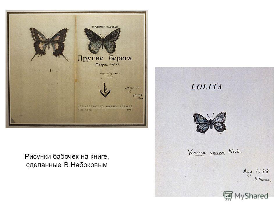 Рисунки бабочек на книге, сделанные В.Набоковым