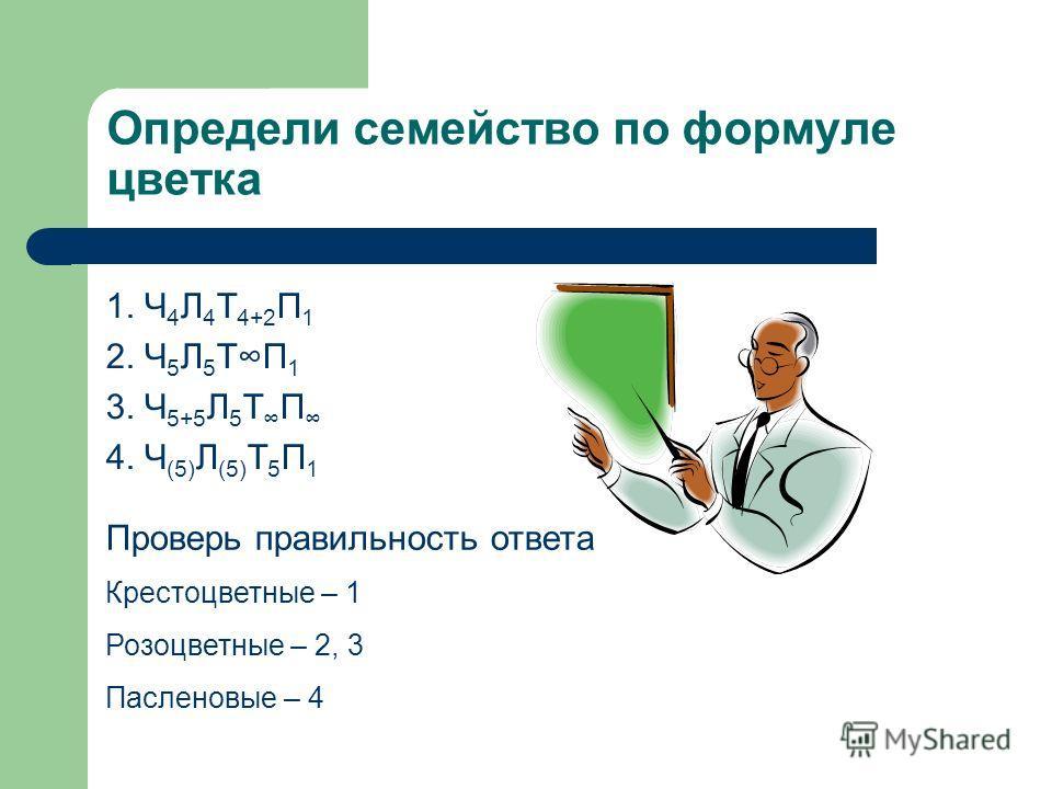 Определи семейство по формуле цветка 1. Ч 4 Л 4 Т 4+2 П 1 2. Ч 5 Л 5 ТП 1 3. Ч 5+5 Л 5 Т П 4. Ч (5) Л (5) Т 5 П 1 Проверь правильность ответа Крестоцветные – 1 Розоцветные – 2, 3 Пасленовые – 4