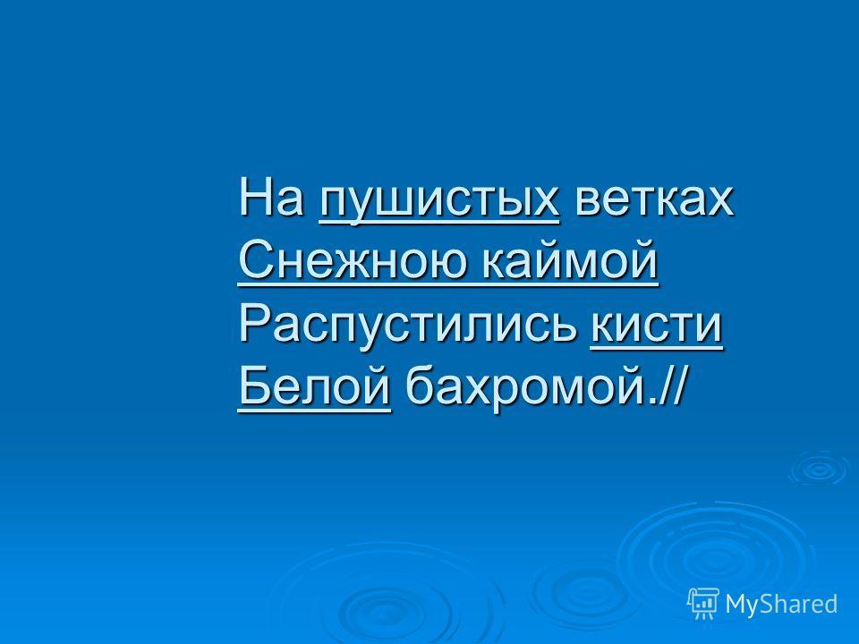 На пушистых ветках Снежною каймой Распустились кисти Белой бахромой.//