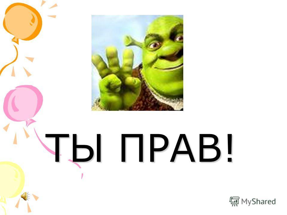 ЁЖИК СВОЁ ЁЛКА ЁЛОЧКА ЁЖ МОЁ