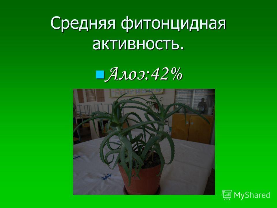 Средняя фитонцидная активность. Алоэ:42% Алоэ:42%