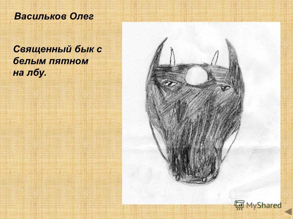 Васильков Олег Священный бык с белым пятном на лбу.