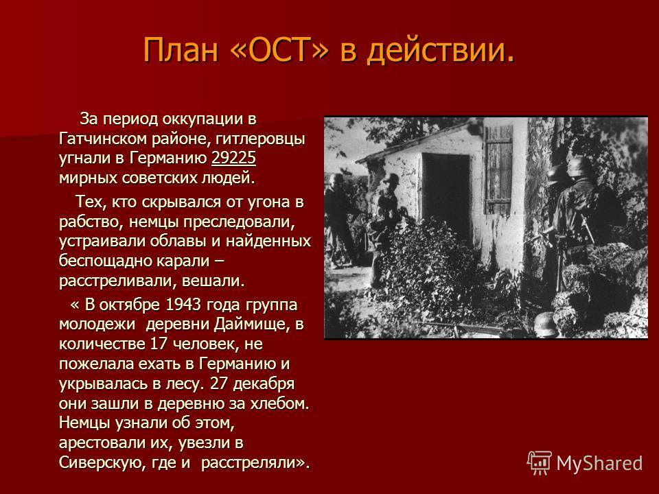 План «ОСТ» в действии. За период оккупации в Гатчинском районе, гитлеровцы угнали в Германию 29225 мирных советских людей. За период оккупации в Гатчинском районе, гитлеровцы угнали в Германию 29225 мирных советских людей. Тех, кто скрывался от угона