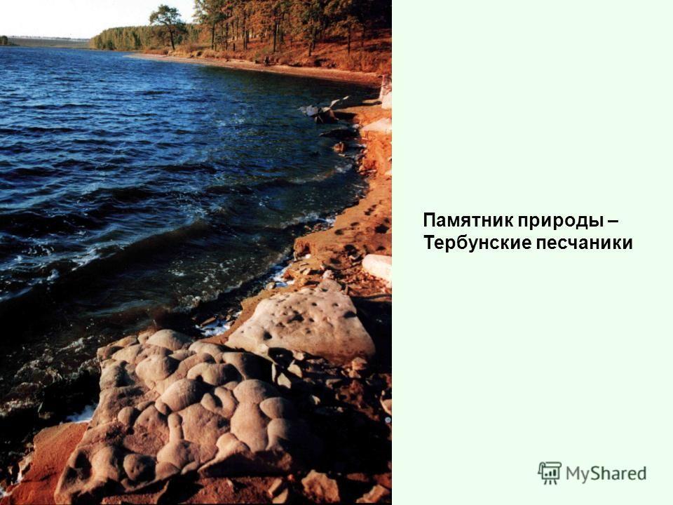 Памятник природы – Тербунские песчаники