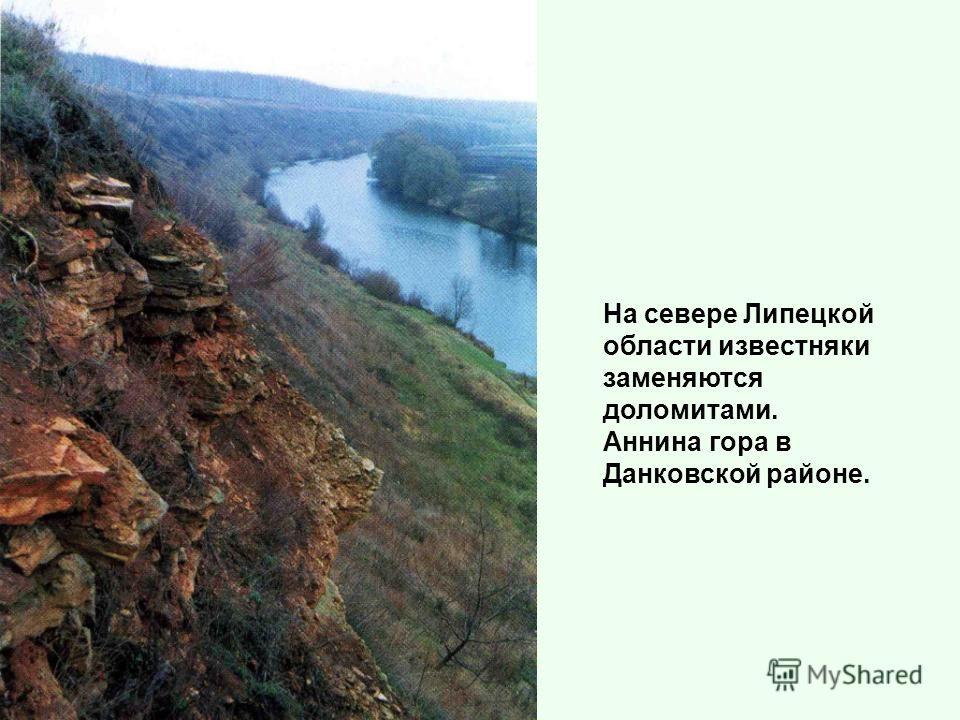 На севере Липецкой области известняки заменяются доломитами. Аннина гора в Данковской районе.