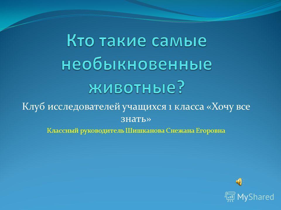 Клуб исследователей учащихся 1 класса «Хочу все знать» Классный руководитель Шишканова Снежана Егоровна