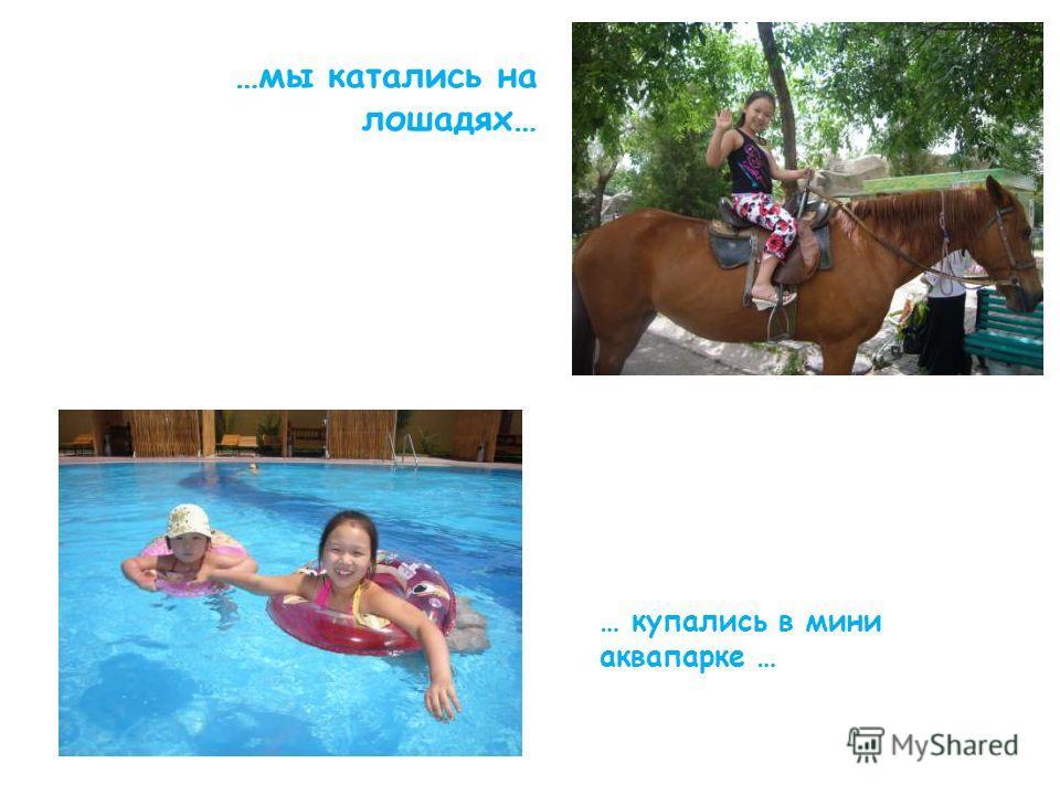 …мы катались на лошадях… … купались в мини аквапарке …