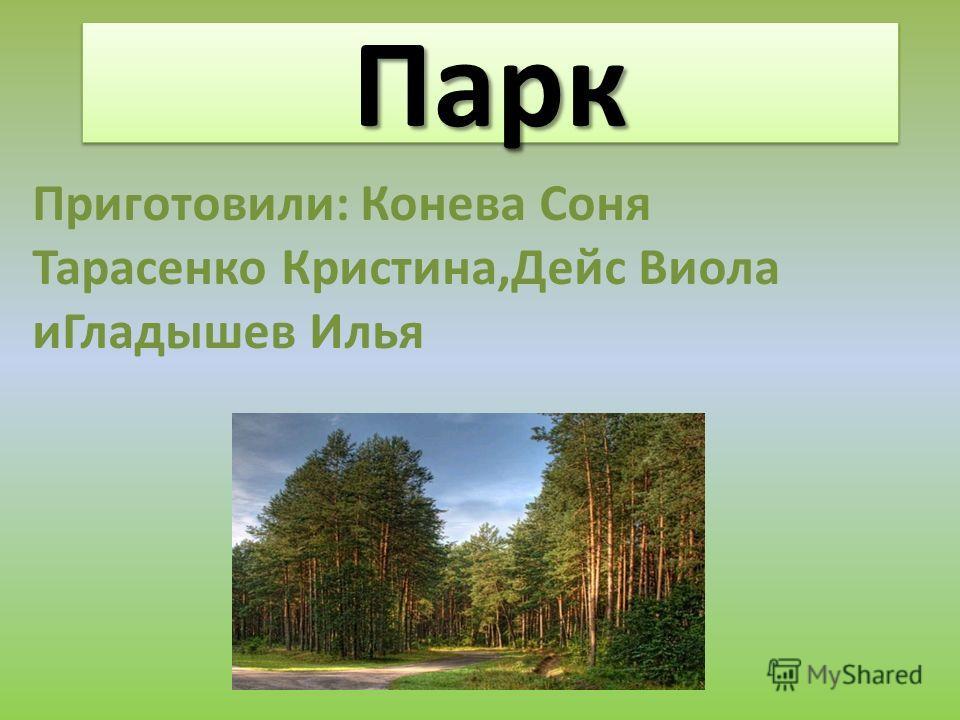 ПаркПарк Приготовили: Конева Соня Тарасенко Кристина,Дейс Виола иГладышев Илья