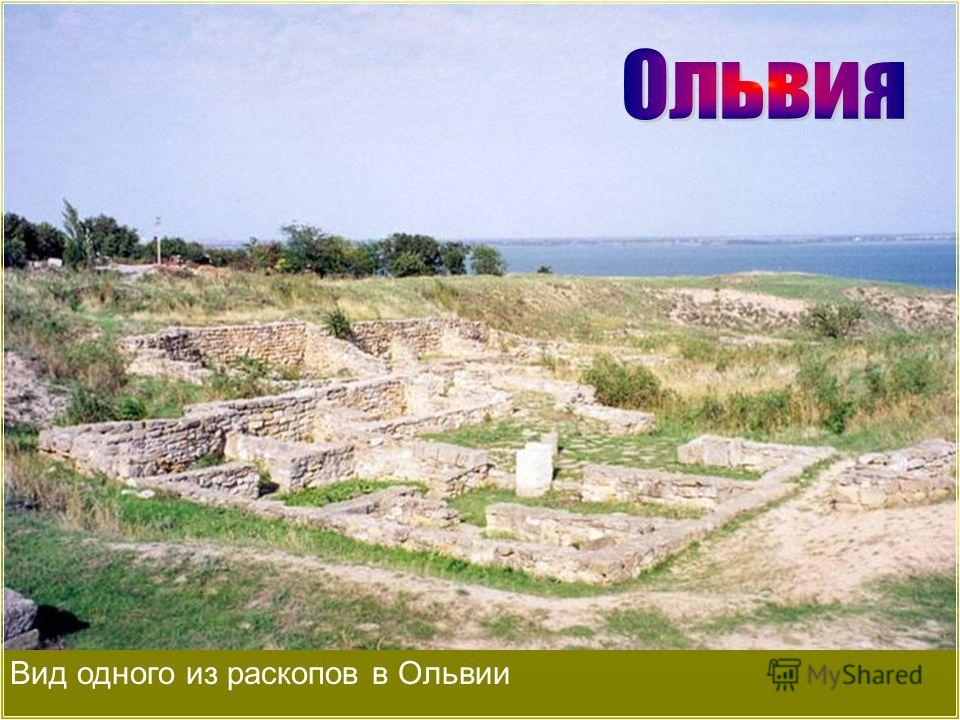 Вид одного из раскопов в Ольвии