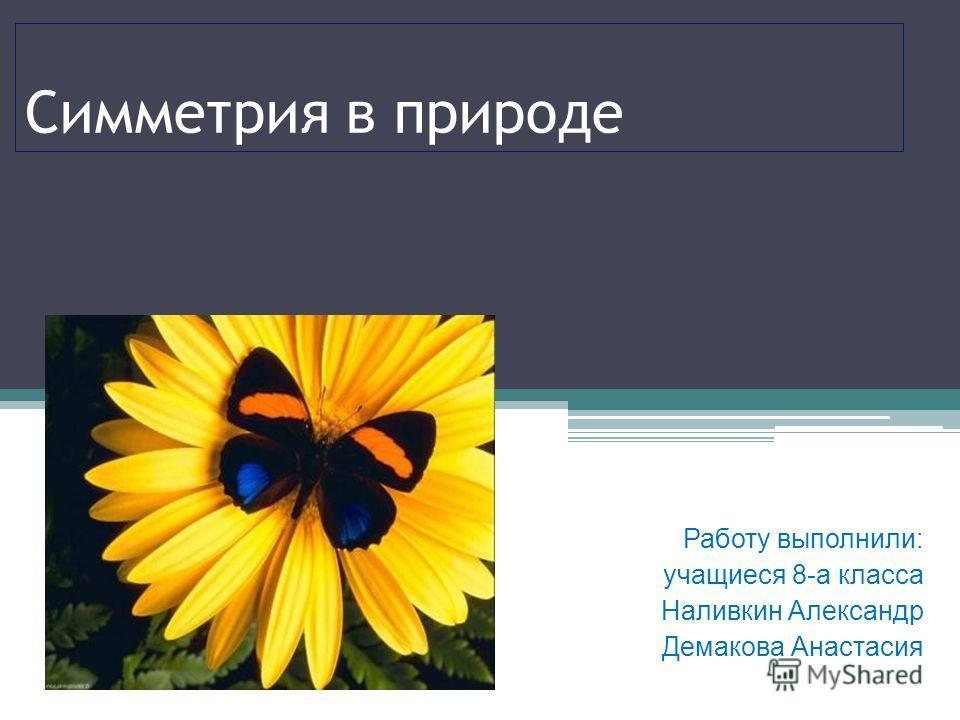 Симметрия в природе Работу выполнили: учащиеся 8-а класса Наливкин Александр Демакова Анастасия