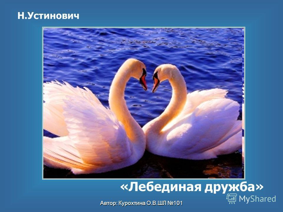 Автор: Курохтина О.В.ШЛ 101 Н.Устинович «Лебединая дружба»