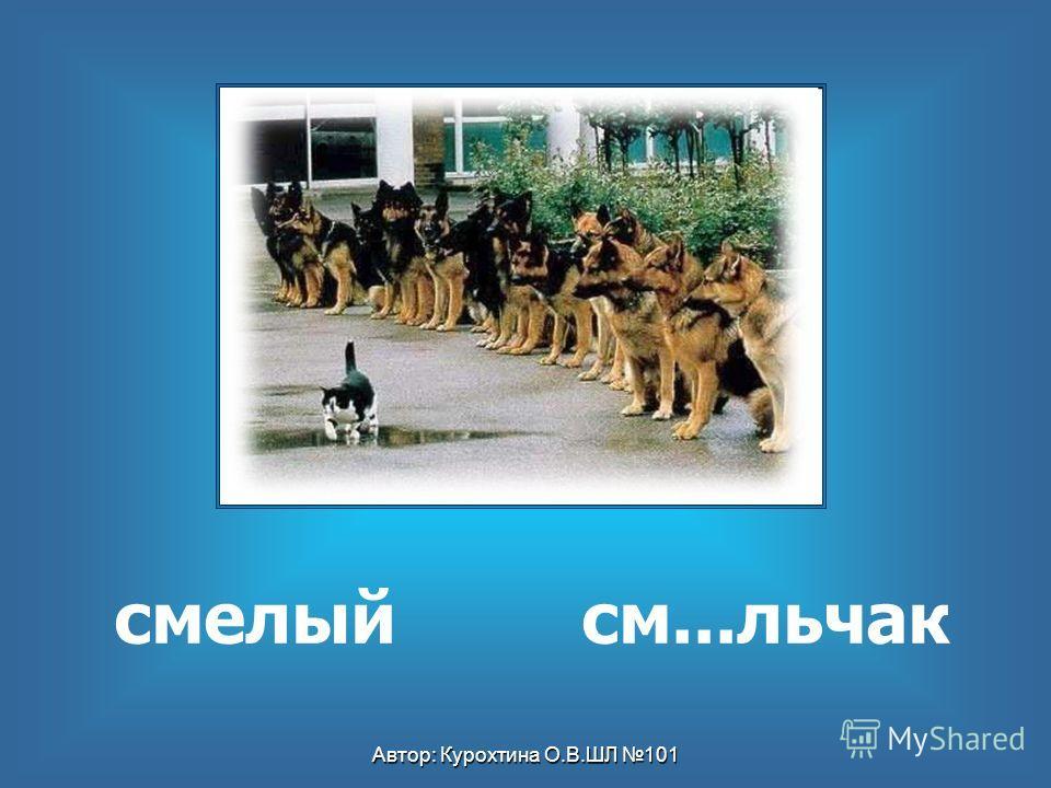 Автор: Курохтина О.В.ШЛ 101 смелый см...льчак