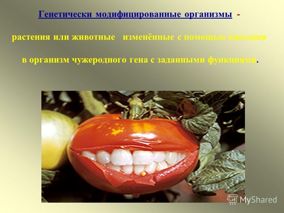 Генетически модифицированные организмы - растения или животные изменённые с помощью внесения в организм чужеродного гена с заданными функциями.