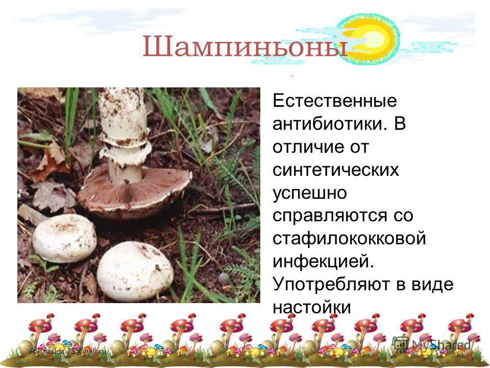 FokinaLida.75@mail.ru Шампиньоны Естественные антибиотики. В отличие от синтетических успешно справляются со стафилококковой инфекцией. Употребляют в виде настойки