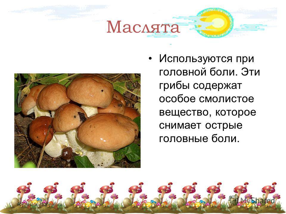 FokinaLida.75@mail.ru Маслята Используются при головной боли. Эти грибы содержат особое смолистое вещество, которое снимает острые головные боли.