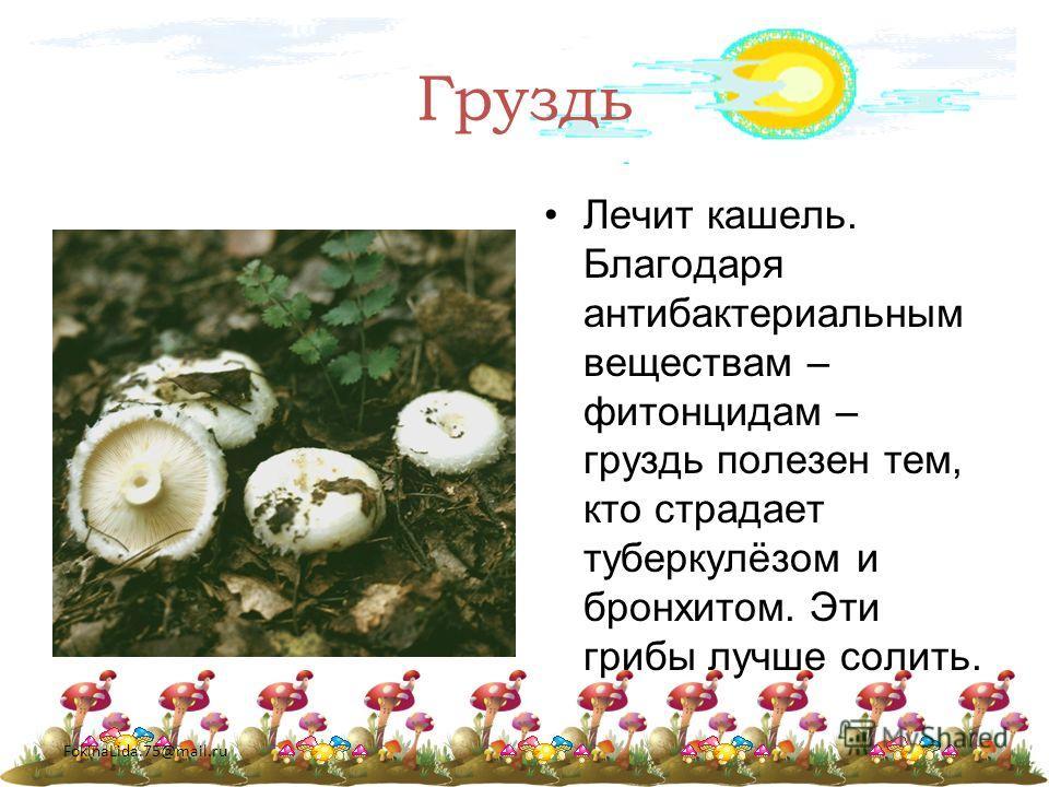 FokinaLida.75@mail.ru Груздь Лечит кашель. Благодаря антибактериальным веществам – фитонцидам – груздь полезен тем, кто страдает туберкулёзом и бронхитом. Эти грибы лучше солить.
