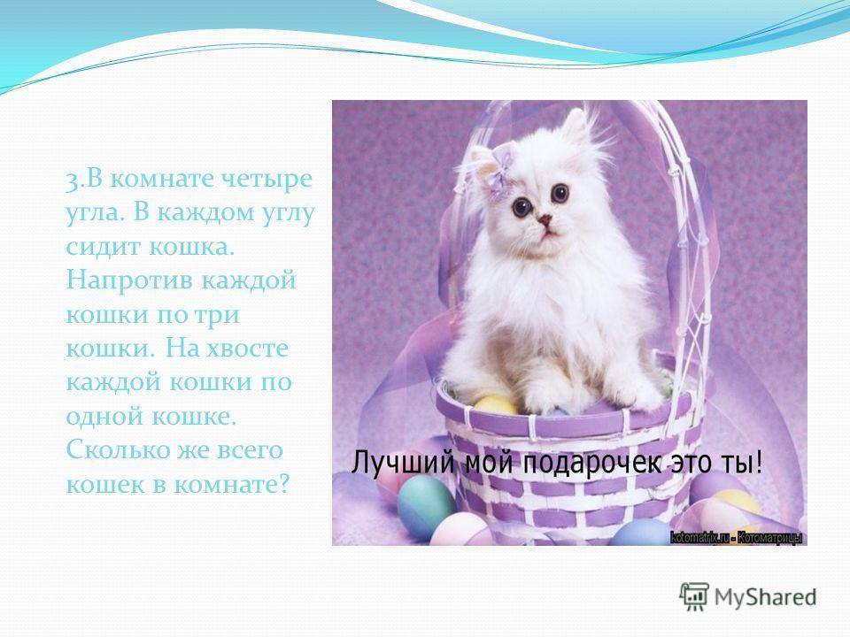 3.В комнате четыре угла. В каждом углу сидит кошка. Напротив каждой кошки по три кошки. На хвосте каждой кошки по одной кошке. Сколько же всего кошек в комнате?