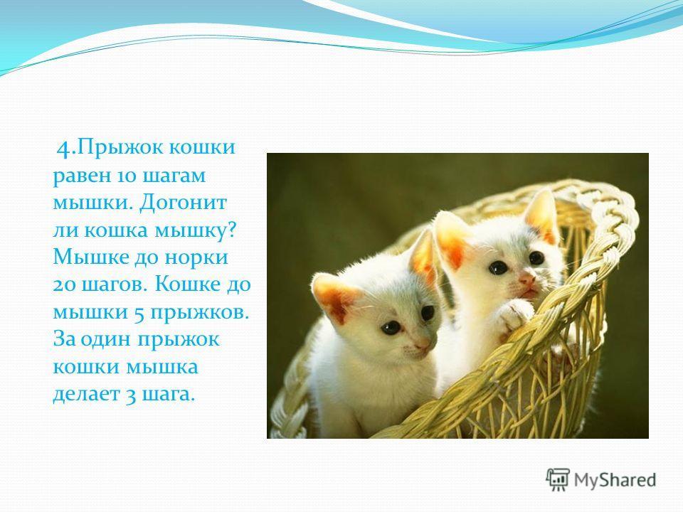 4. Прыжок кошки равен 10 шагам мышки. Догонит ли кошка мышку? Мышке до норки 20 шагов. Кошке до мышки 5 прыжков. За один прыжок кошки мышка делает 3 шага.