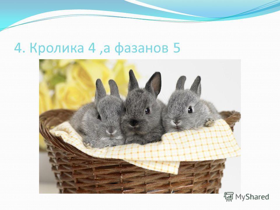 4. Кролика 4,а фазанов 5