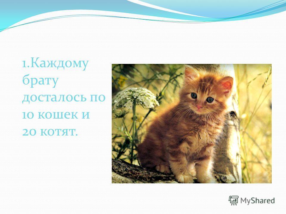 1.Каждому брату досталось по 10 кошек и 20 котят.