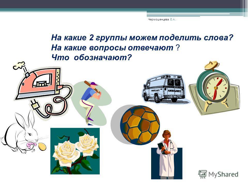 Чермошенцева Е.А.. На какие 2 группы можем поделить слова? На какие вопросы отвечают ? Что обозначают?. ??