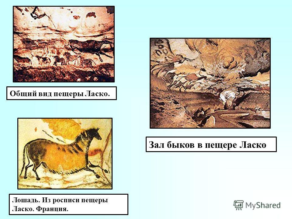Общий вид пещеры Ласко. Лошадь. Из росписи пещеры Ласко. Франция. Зал быков в пещере Ласко