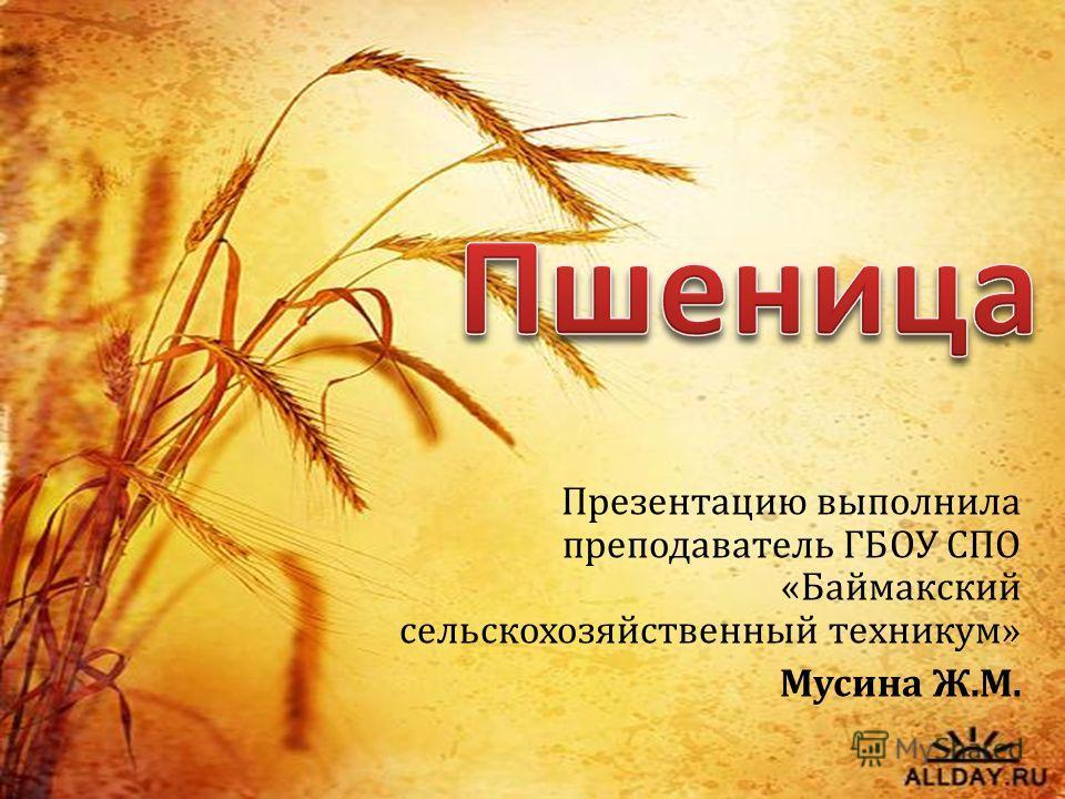 Презентацию выполнила преподаватель ГБОУ СПО «Баймакский сельскохозяйственный техникум» Мусина Ж.М.