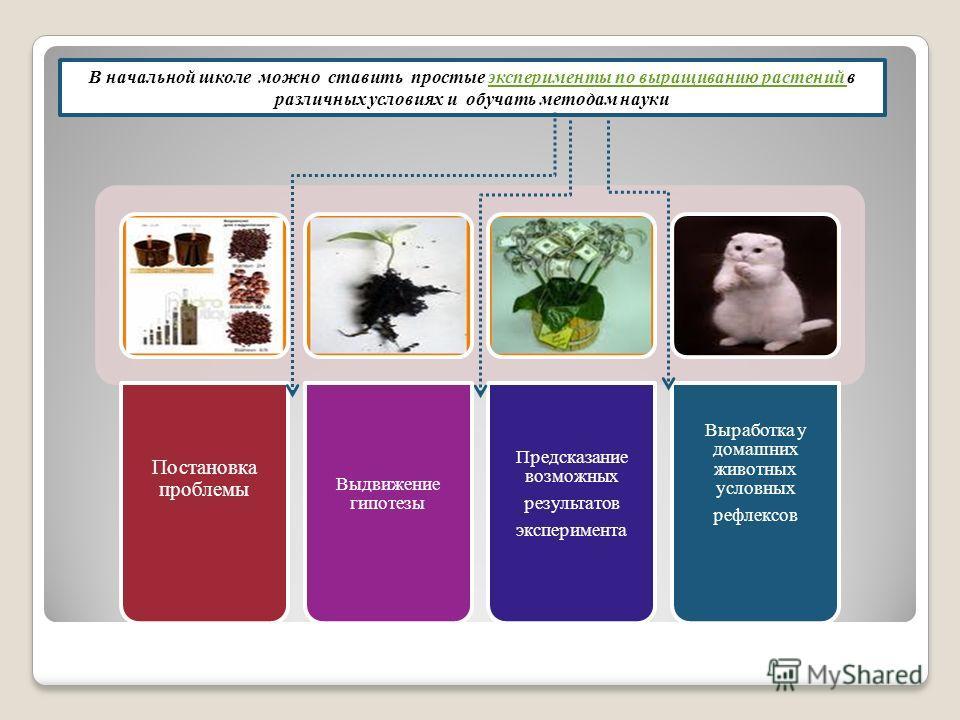 Постановка проблемы Выдвижение гипотезы Предсказание возможных результатов эксперимента Выработка у домашних животных условных рефлексов В начальной школе можно ставить простые эксперименты по выращиванию растений в различных условиях и обучать метод