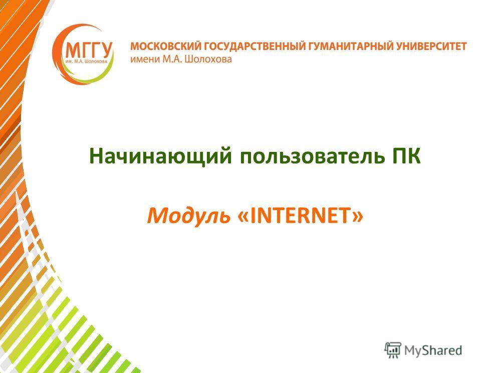 Начинающий пользователь ПК Модуль «INTERNET»