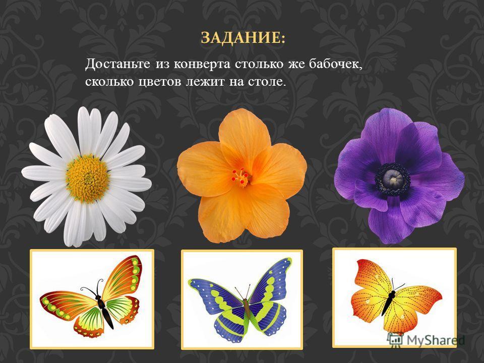 ЗАДАНИЕ : Достаньте из конверта столько же бабочек, сколько цветов лежит на столе.
