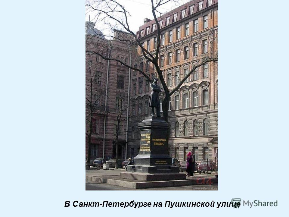 В Санкт-Петербурге на Пушкинской улице