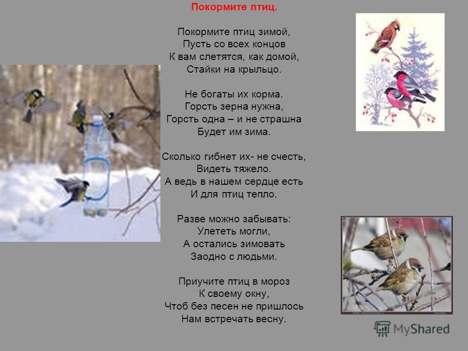 Покормите птиц. Покормите птиц зимой, Пусть со всех концов К вам слетятся, как домой, Стайки на крыльцо. Не богаты их корма. Горсть зерна нужна, Горсть одна – и не страшна Будет им зима. Сколько гибнет их- не счесть, Видеть тяжело. А ведь в нашем сер