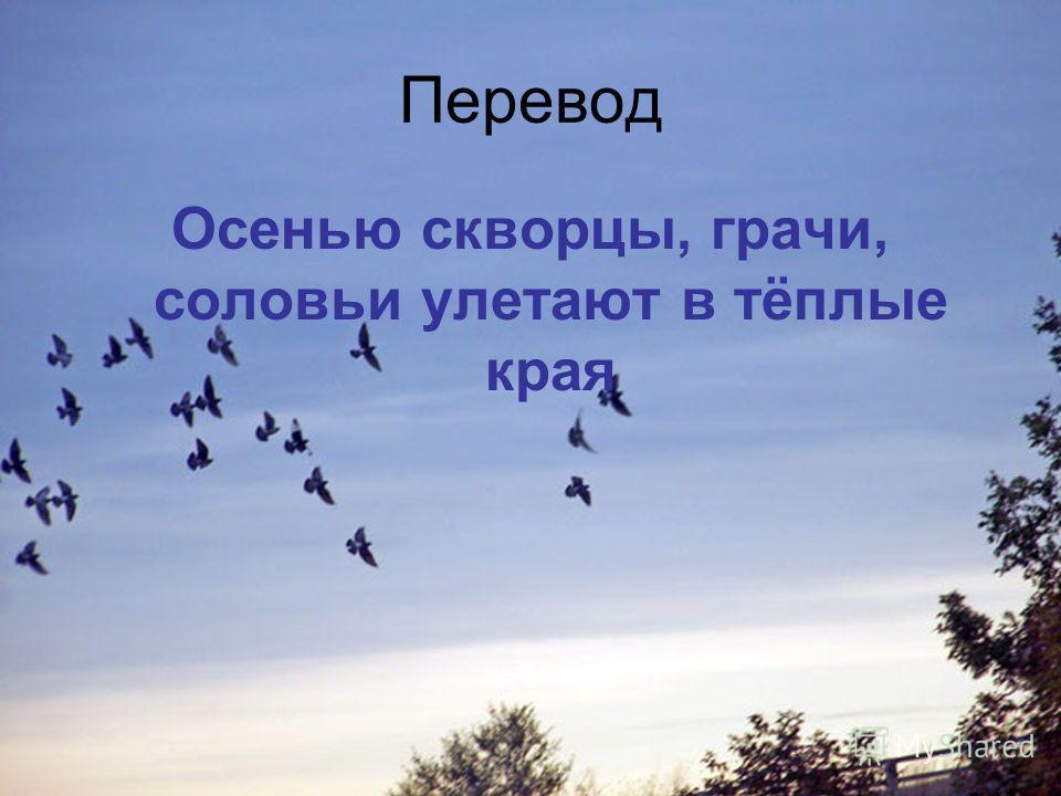 Перевод Осенью скворцы, грачи, соловьи улетают в тёплые края