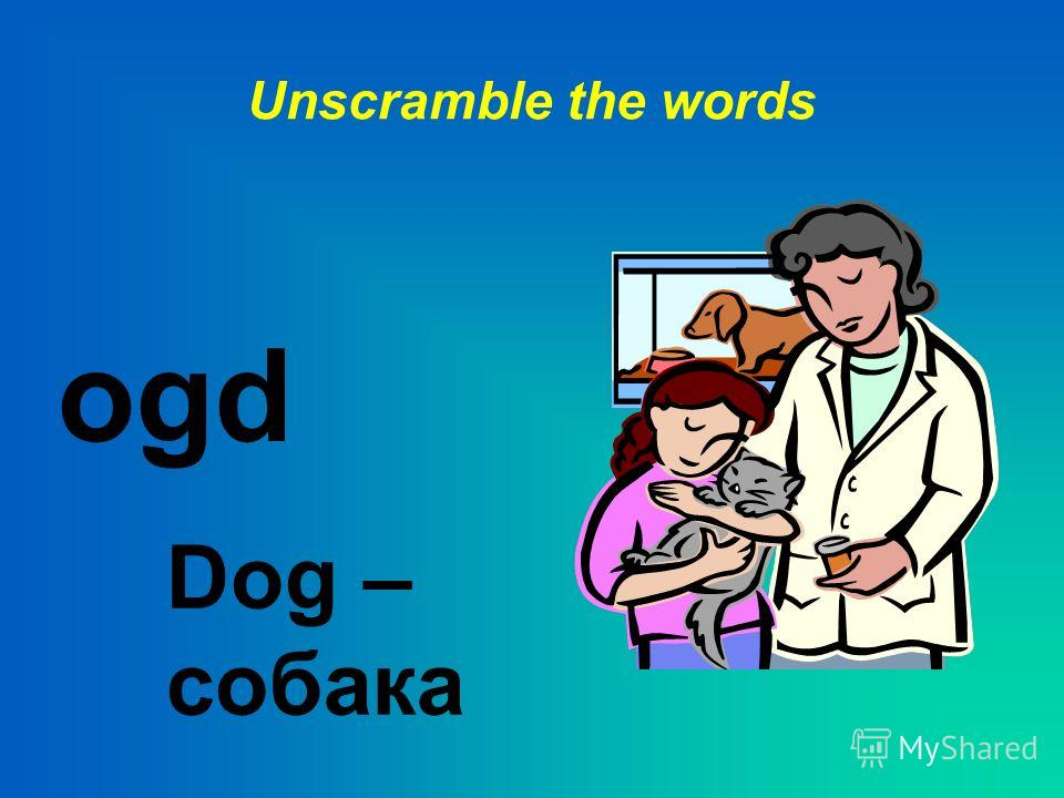 Unscramble the words ofx Fox - лиса
