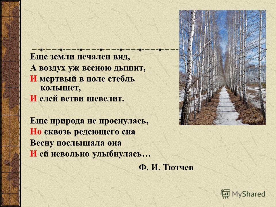 Еще земли печален вид, А воздух уж весною дышит, И мертвый в поле стебль колышет, И елей ветви шевелит. Еще природа не проснулась, Но сквозь редеющего сна Весну послышала она И ей невольно улыбнулась… Ф. И. Тютчев
