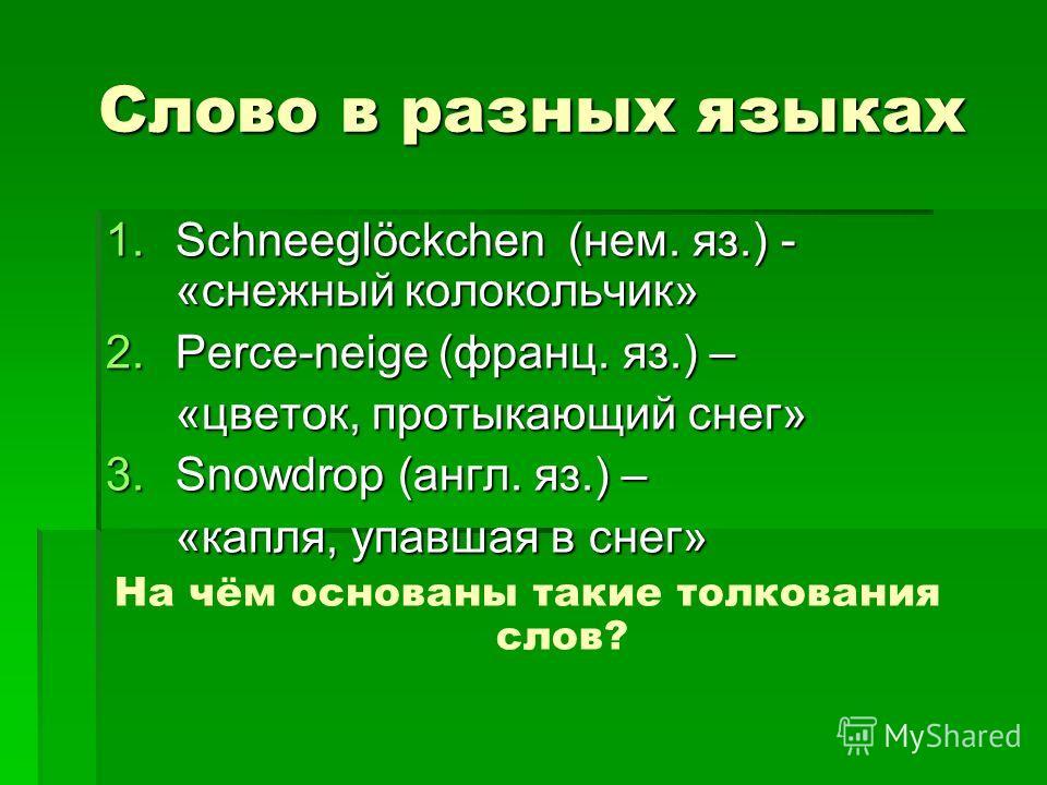 Слово в разных языках 1.Schneeglöckchen (нем. яз.) - «снежный колокольчик» 2.Perce-neige (франц. яз.) – «цветок, протыкающий снег» 3.Snowdrop (англ. яз.) – «капля, упавшая в снег» На чём основаны такие толкования слов?