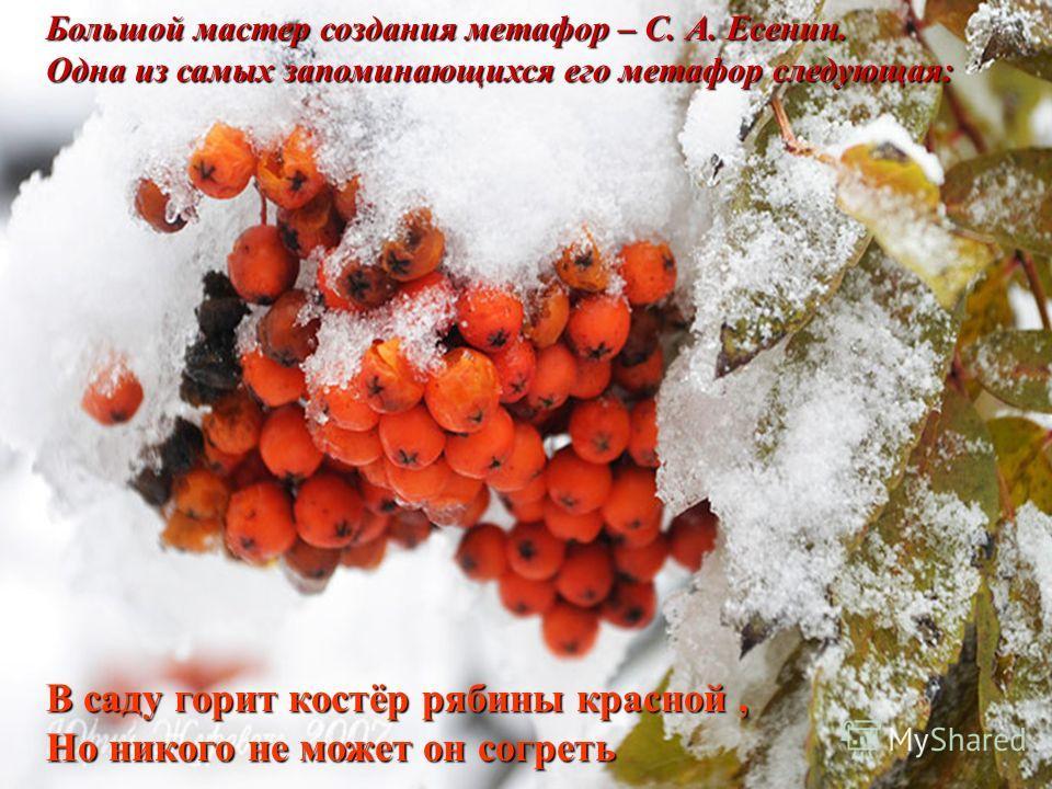 Большой мастер создания метафор – С. А. Есенин. Одна из самых запоминающихся его метафор следующая: В саду горит костёр рябины красной, Но никого не может он согреть