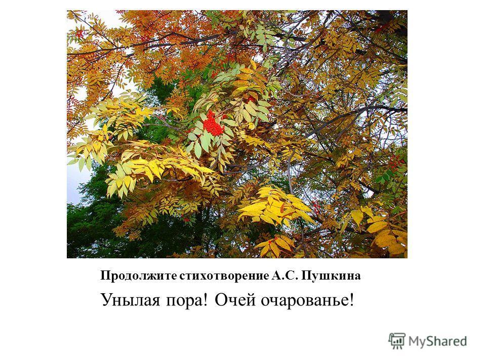 Продолжите стихотворение А.С. Пушкина Унылая пора! Очей очарованье!