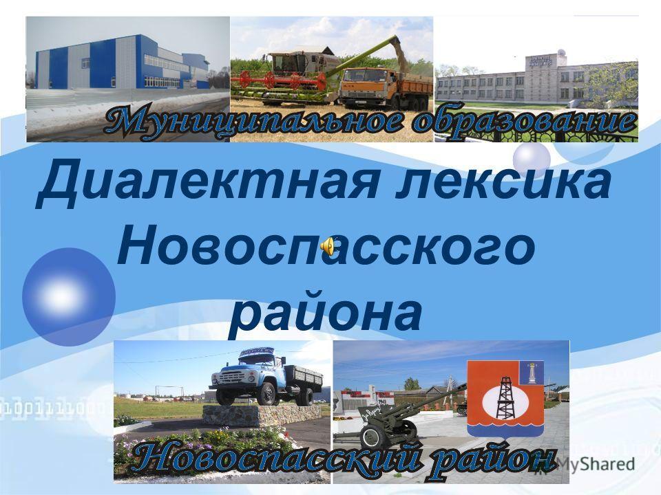 Диалектная лексика Новоспасского района