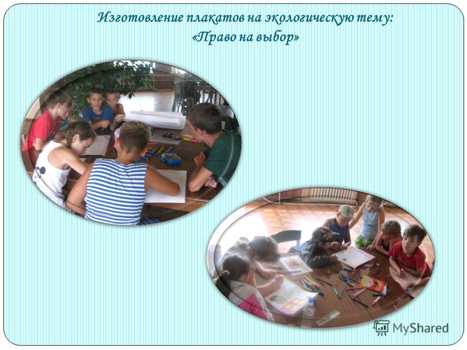 Изготовление плакатов на экологическую тему: «Право на выбор»