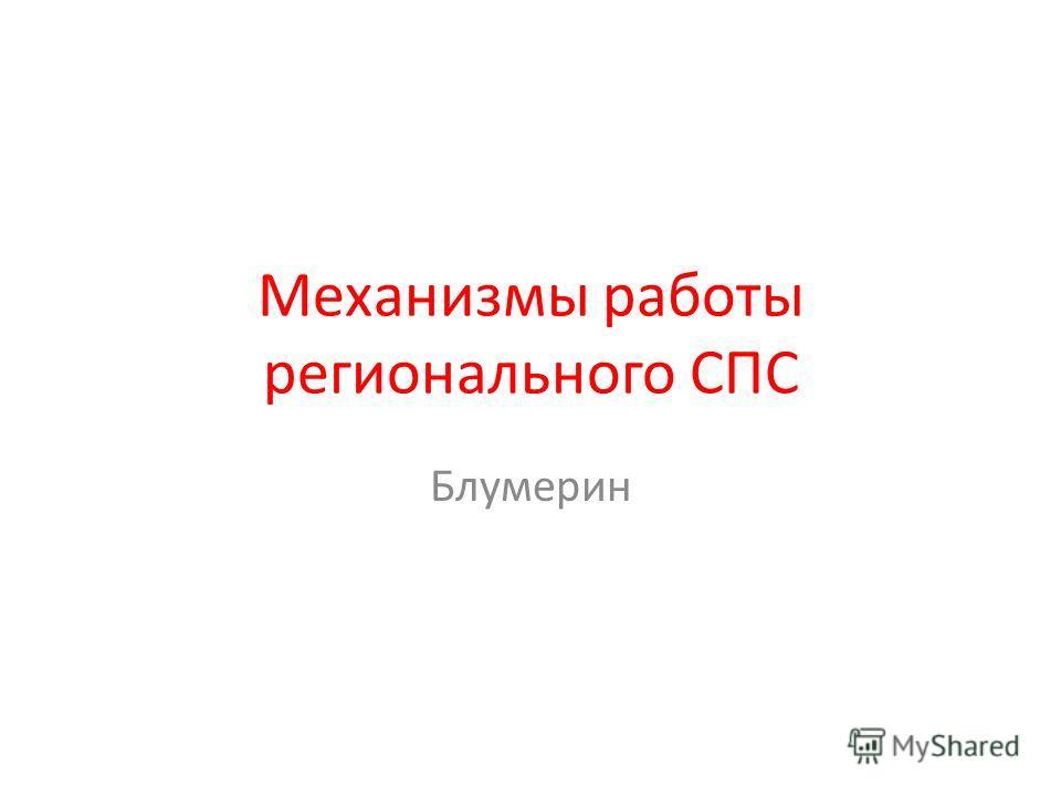 Механизмы работы регионального СПС Блумерин