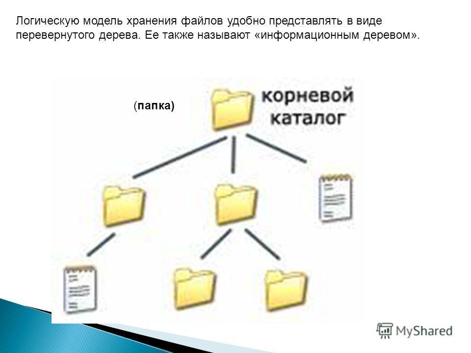 Логическую модель хранения файлов удобно представлять в виде перевернутого дерева. Ее также называют «информационным деревом». (папка)
