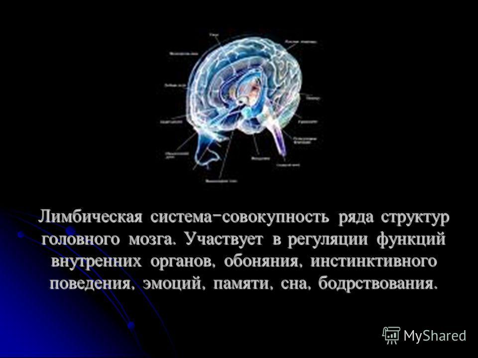 Лимбическая система - совокупность ряда структур головного мозга. Участвует в регуляции функций внутренних органов, обоняния, инстинктивного поведения, эмоций, памяти, сна, бодрствования.