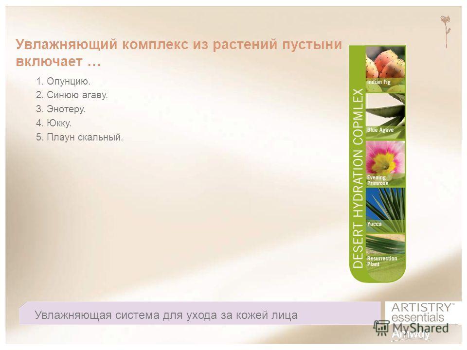 Увлажняющий комплекс из растений пустыни включает … 1. Опунцию. 2. Синюю агаву. 3. Энотеру. 4. Юкку. 5. Плаун скальный. Увлажняющая система для ухода за кожей лица