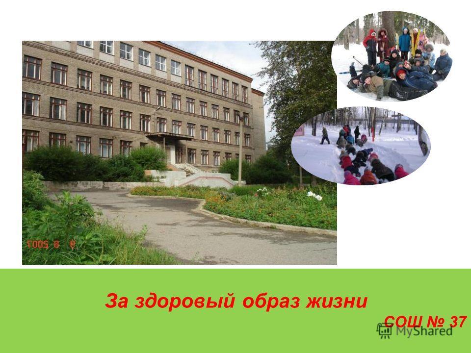 За здоровый образ жизни СОШ 37 МОУ «Средняя общеобразовательная школа 37» г. Перми