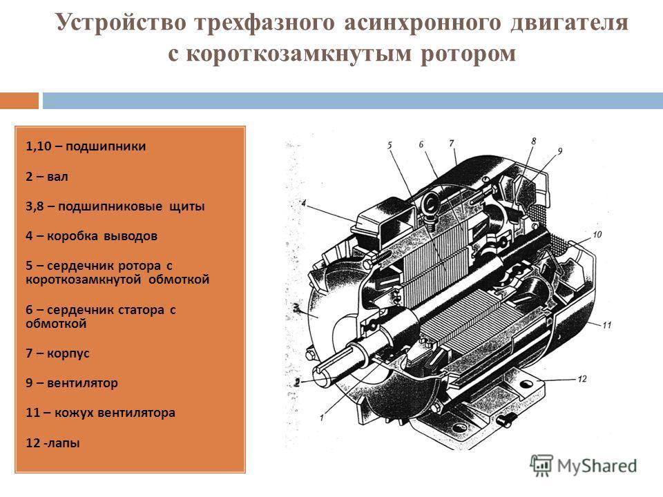 Устройство трехфазного асинхронного двигателя с короткозамкнутым ротором 1,10 – подшипники 2 – вал 3,8 – подшипниковые щиты 4 – коробка выводов 5 – сердечник ротора с короткозамкнутой обмоткой 6 – сердечник статора с обмоткой 7 – корпус 9 – вентилято