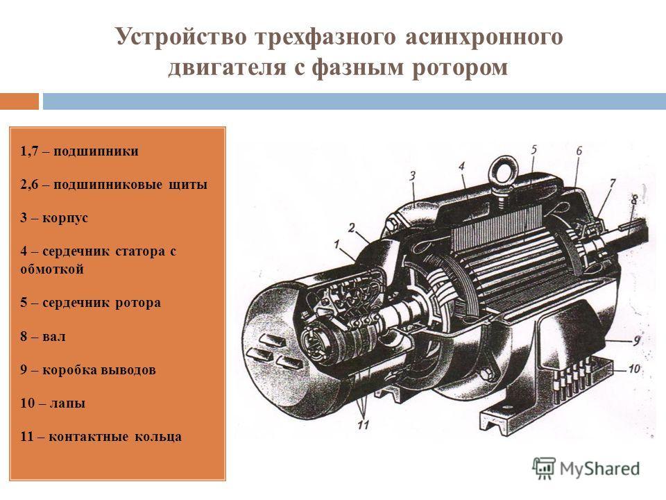 Устройство трехфазного асинхронного двигателя с фазным ротором 1,7 – подшипники 2,6 – подшипниковые щиты 3 – корпус 4 – сердечник статора с обмоткой 5 – сердечник ротора 8 – вал 9 – коробка выводов 10 – лапы 11 – контактные кольца