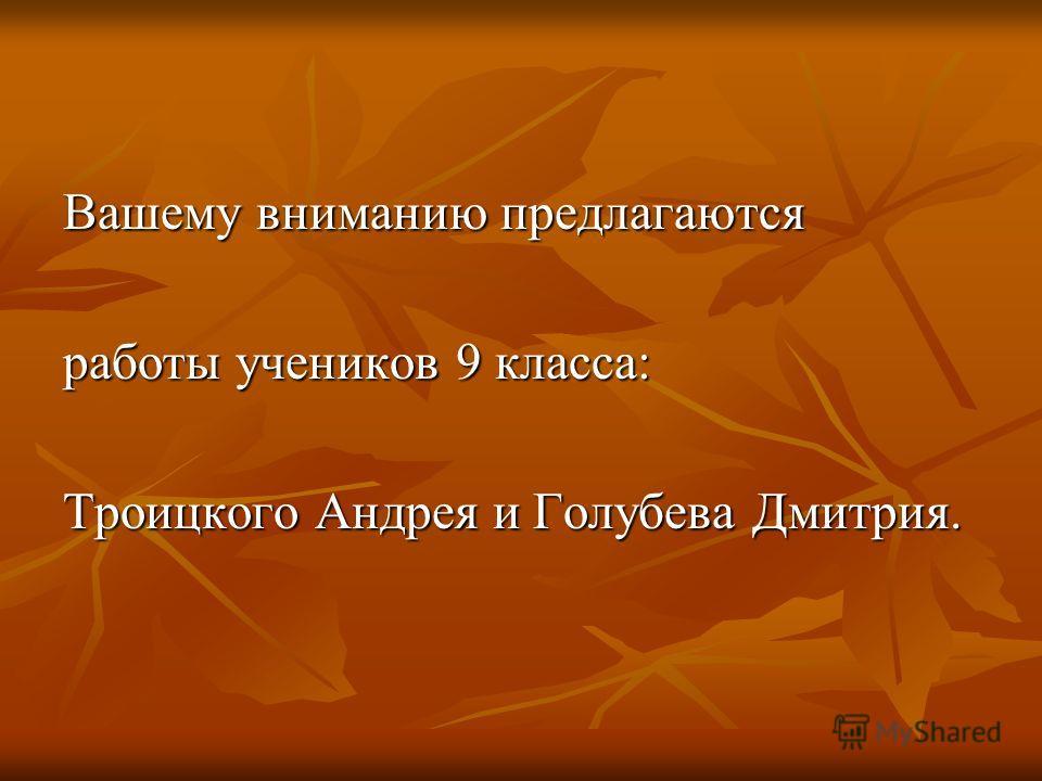 Вашему вниманию предлагаются работы учеников 9 класса: Троицкого Андрея и Голубева Дмитрия.
